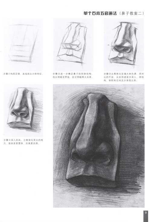 本书是专门针对初学石膏头像的绘画者编写而成