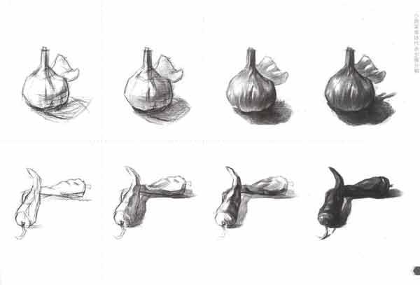 蔬菜素描结构图片