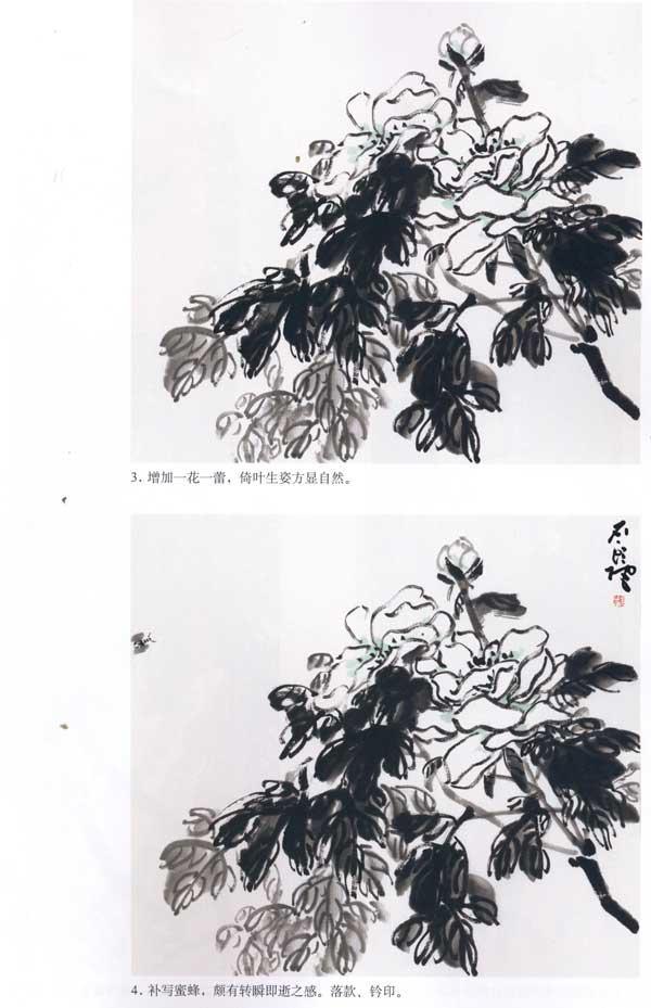 目录 牡丹概述 牡丹结构 写意牡丹花朵的画法(一) 写意牡丹花朵