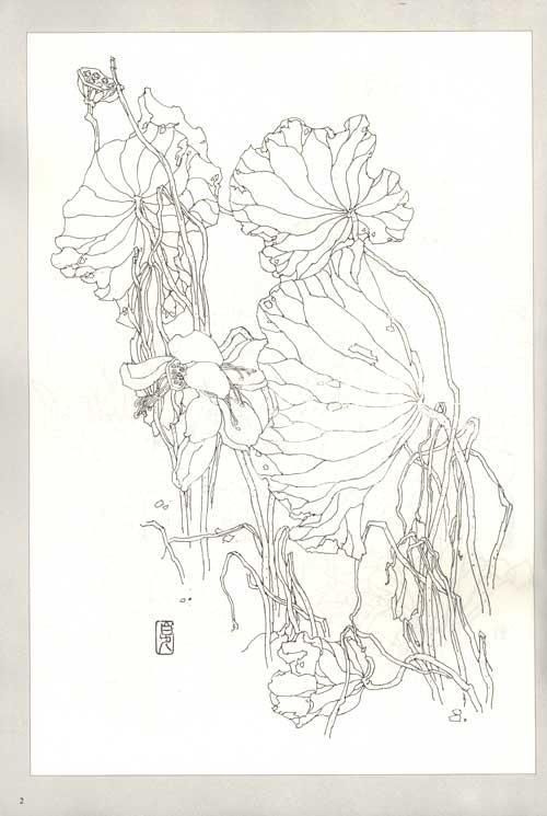 靓丽花卉手绘图案图片