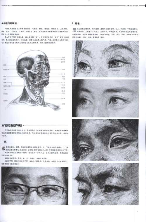 素描人像的表现方法 素描人像的基本要领