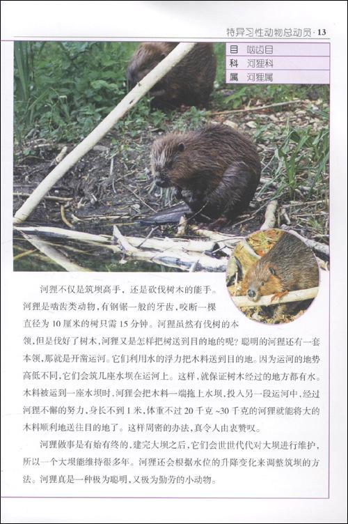 特异习性动物总动员--科普/百科-文轩网