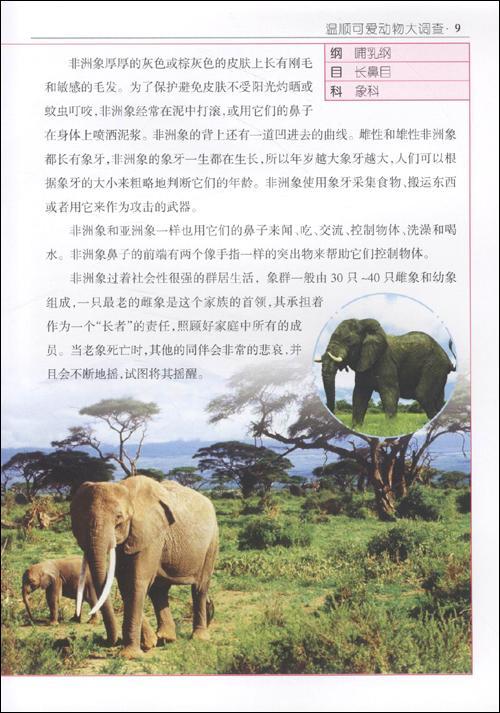 少儿 科普/百科  动物  目录 可爱的陆地生灵  憨态可掬的非洲象