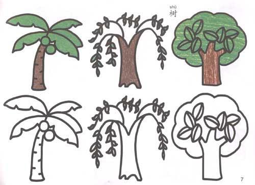 夏天有哪些动物或植物在夏天生长请画一画,写一写