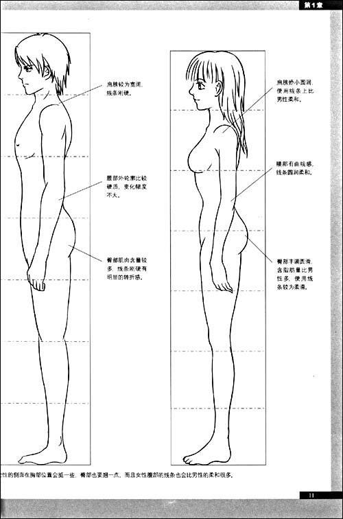 1人物三面图