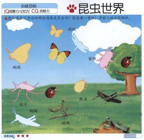 学习拼音,英语,数字,汉字,了解动物,车,玩具,颜色形状,水果蔬菜及国旗