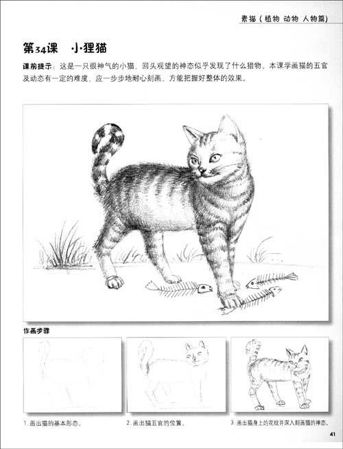 素描围巾画法步骤图片