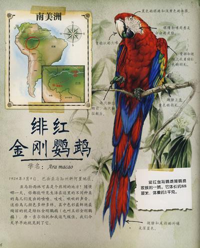 《非洲动物》:介绍了非洲草原中一些稀有动物的特征