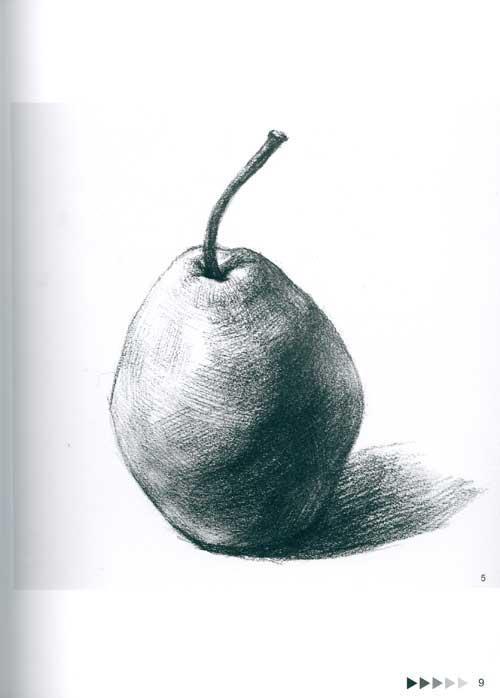单个静物的多角度表现·素描蔬果-杨勇费舜编著-技法